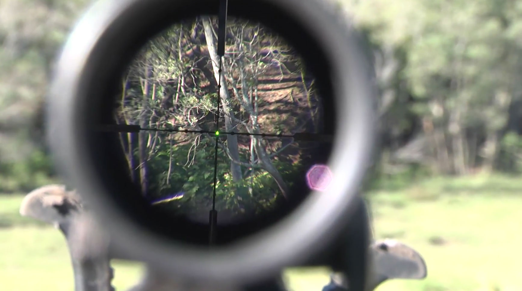 Scott Haugen—Ideal Reticle